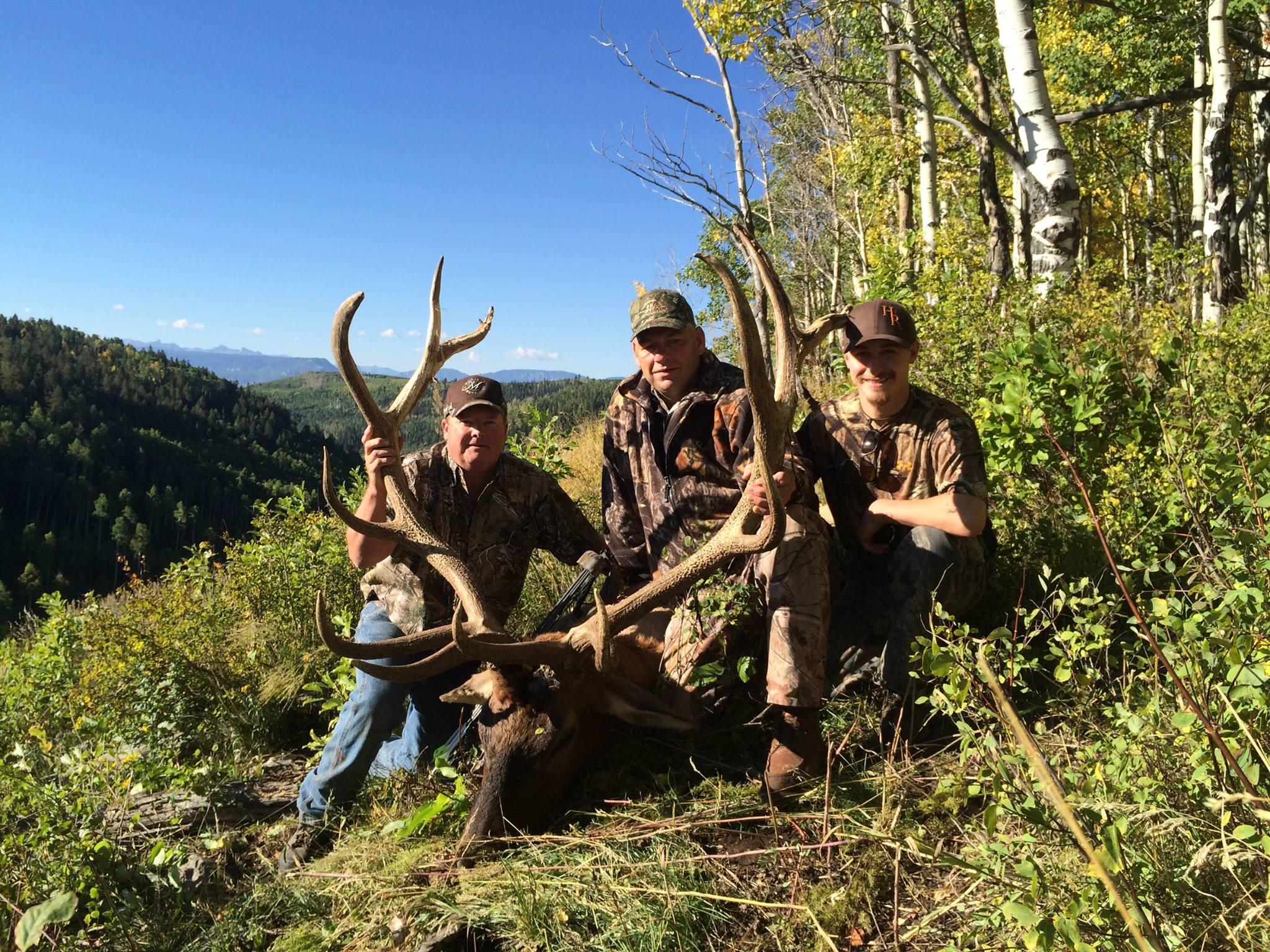 Colorado Trophy Elk Hunt - Homestead Ranch