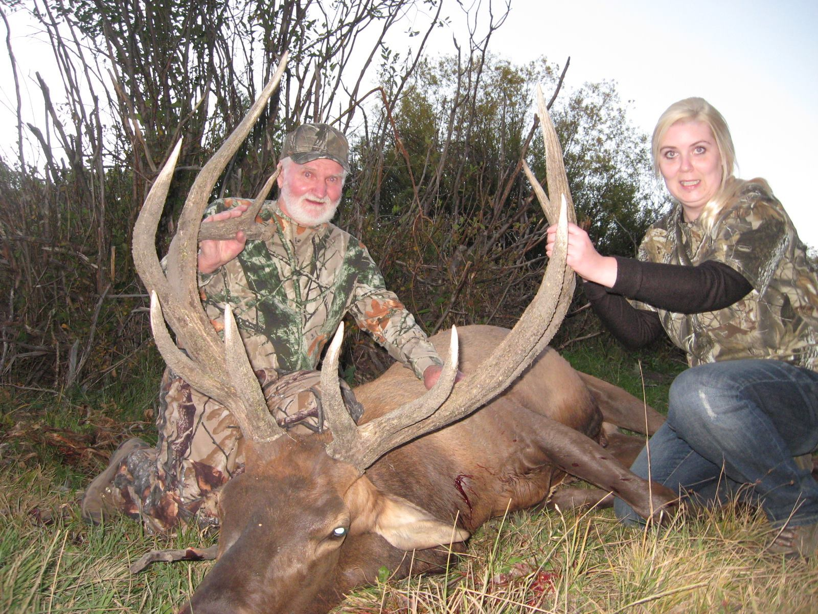 Homestead Ranch - Colorado Trophy Elk Hunting Outfitters